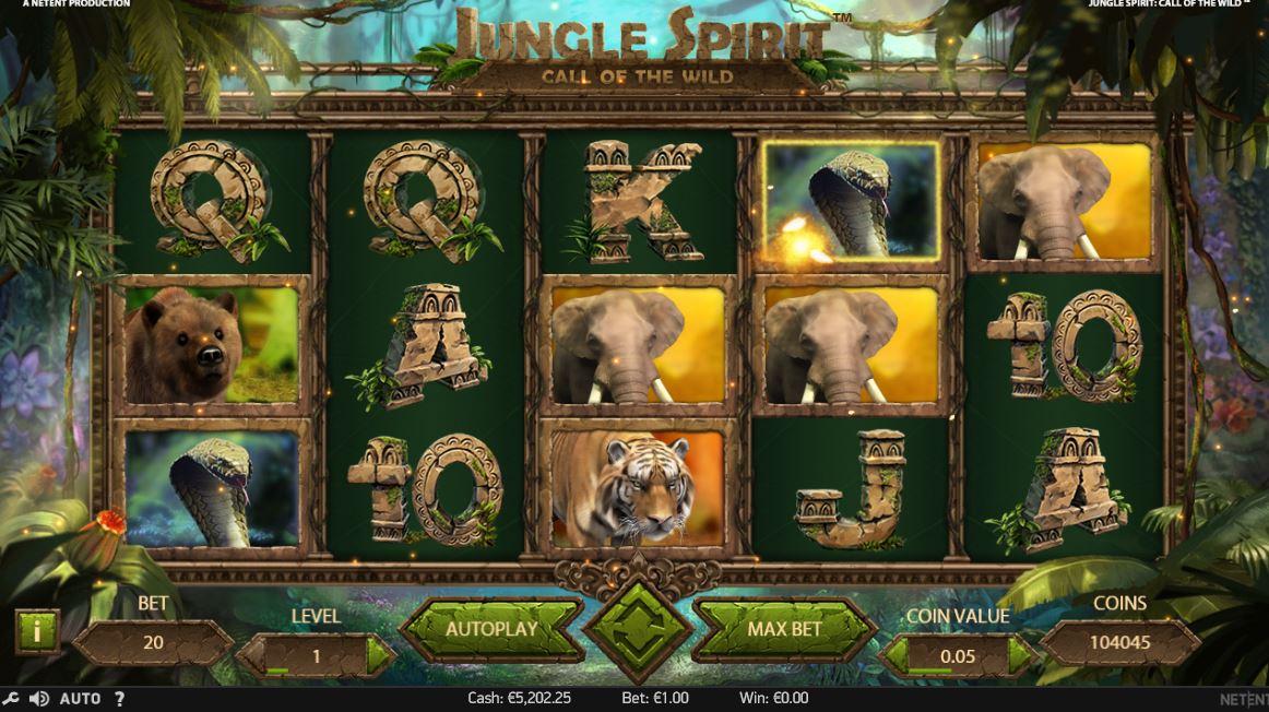 Casino bonus - 73791
