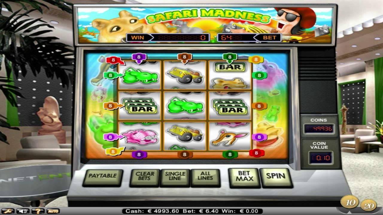Prova Safari Madness - 30464