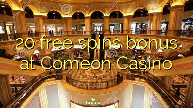 Internet casino - 13931