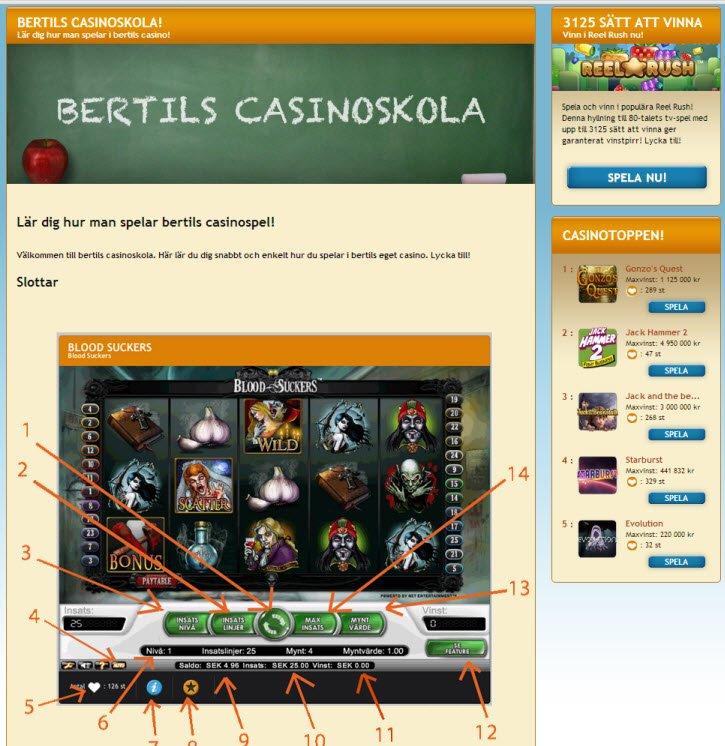 Casino med - 22025